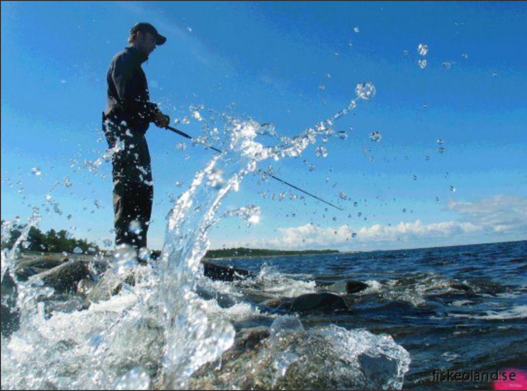 fiske på Öland. boende för fiskare på öland